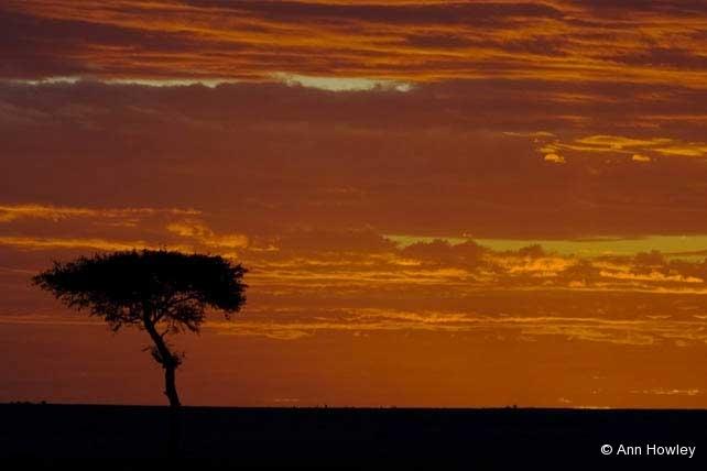 Sunrise #1, Kenya