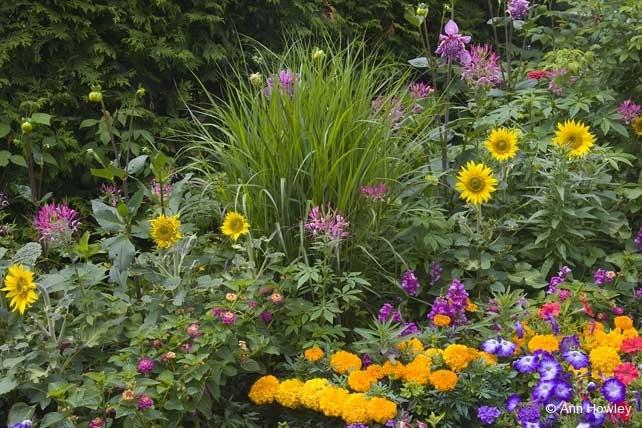 Mackinac Grand Garden #2,  MI
