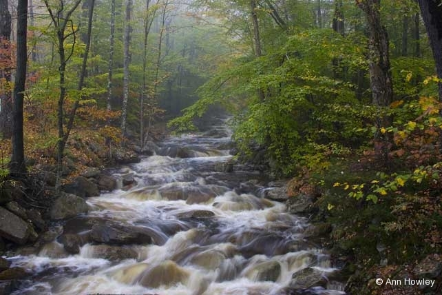 Appalachian Trail, Vermont